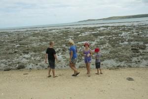 Flinders Island-på jakt efter snäckor